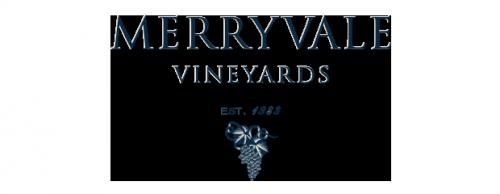 MVV-logo-brandview