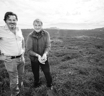 Mulligan Stew – Page 13 – With Terry David Mulligan